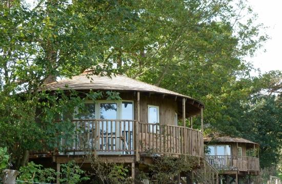 Eco-Lodge Tree Houses