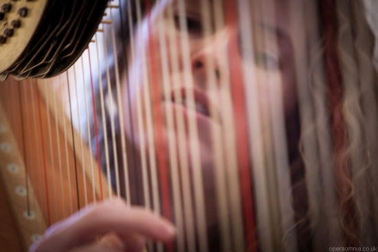 Harriet Adie - Harpist